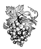 Bolles Köche - Wein Icon